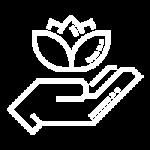 holistic icon